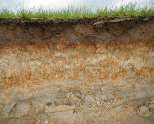 bodemstructuur